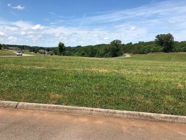 105 Hummingbird Drive, Vonore, TN 37885 (#1043948) :: Shannon Foster Boline Group