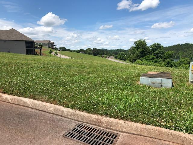 305 Hummingbird Drive, Vonore, TN 37885 (#1043981) :: Shannon Foster Boline Group