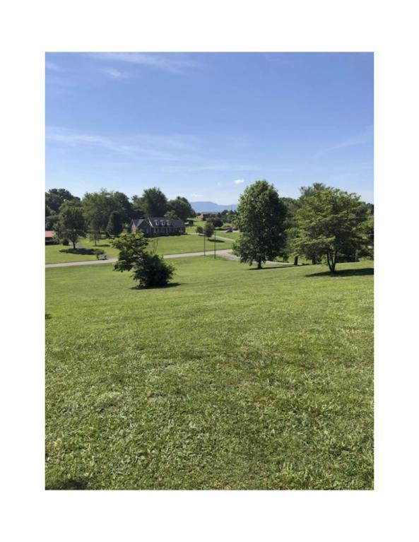 Peppermint Hills Drive, Maryville, TN 37804 (#1044865) :: Billy Houston Group