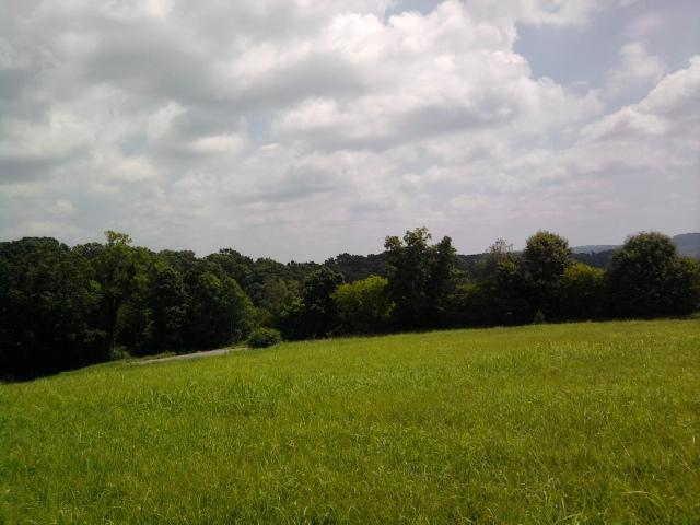 Lot 2 Alaina Drive, Sweetwater, TN 37874 (#1044934) :: Billy Houston Group
