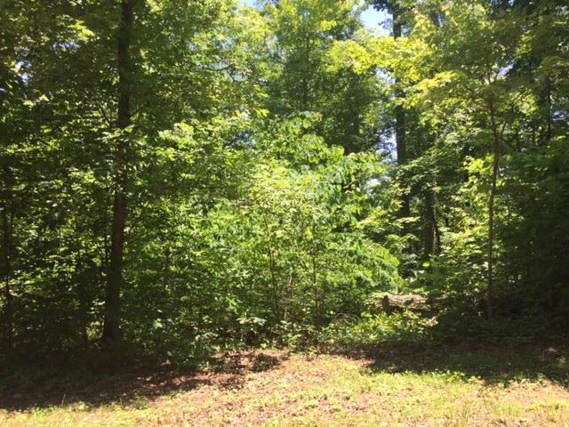 4566 Crooked Creek Way, Maryville, TN 37803 (#1044993) :: Billy Houston Group