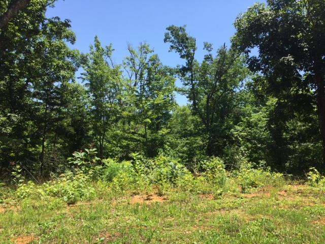 4580 Crooked Creek Way, Maryville, TN 37803 (#1045006) :: Billy Houston Group