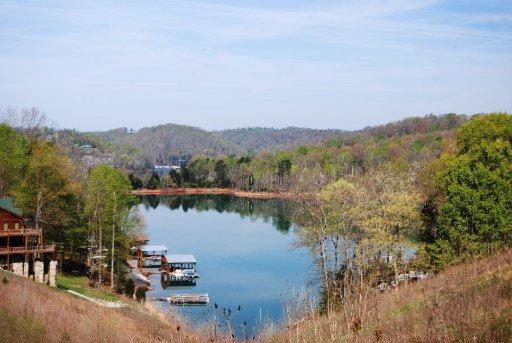 W Deer Walk Lane, LaFollette, TN 37766 (#1045124) :: Shannon Foster Boline Group