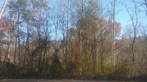 207 Hermitage Blvd, Oak Ridge, TN 37830 (#1045392) :: Billy Houston Group