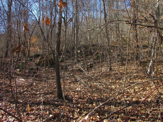 Lot 571 Clear Water Rd - Photo 1