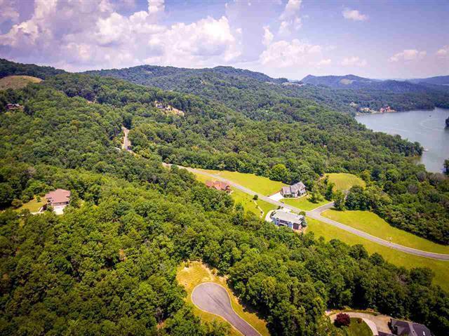 8028 Mountain Ridge Drive, Mooresburg, TN 37811 (#1045481) :: Billy Houston Group