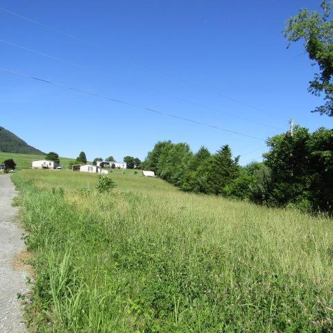 Orange Lane, Speedwell, TN 37870 (#1045868) :: Billy Houston Group