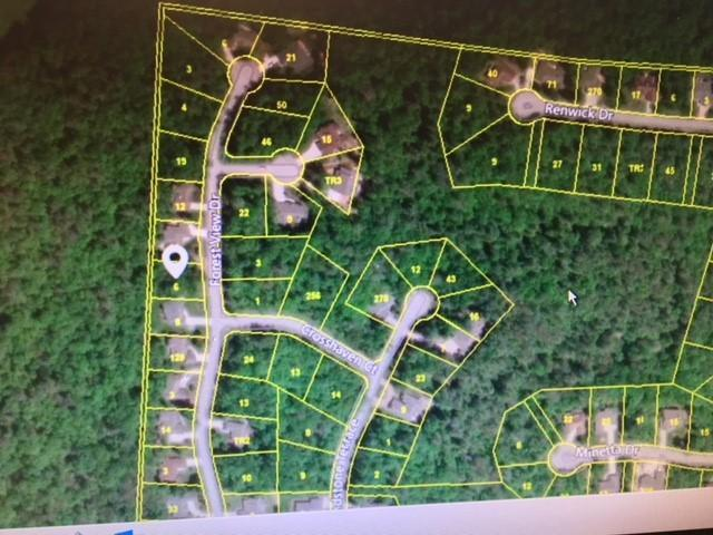 Forest View Drive, Fairfield Glade, TN 38558 (#1047166) :: Billy Houston Group