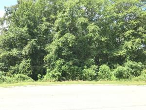 Rock Crest Drive, Andersonville, TN 37705 (#1048804) :: Billy Houston Group