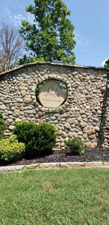 Cove Springs Drive, Dandridge, TN 37725 (#1048861) :: Billy Houston Group