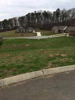 502 Ivey Vine Drive, Maryville, TN 37801 (#1048994) :: Billy Houston Group
