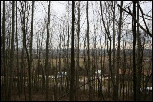 Lot # 37 Woodland Drive, Sweetwater, TN 37874 (#1049242) :: Billy Houston Group