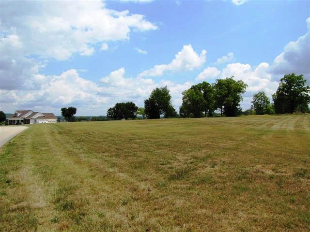 Wild Pear Trail Tr, Dandridge, TN 37725 (#1049550) :: Billy Houston Group