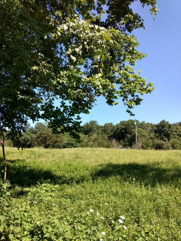 #50 Cowslip Drive, harrogate, TN 37752 (#1050159) :: SMOKY's Real Estate LLC