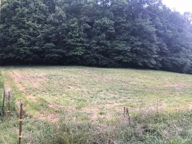 Lot 28 Cave Valley Road, Byrdstown, TN 38549 (#1050468) :: Billy Houston Group
