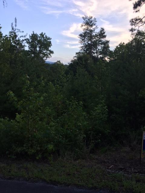 3899 Bear Track Way, Del Rio, TN 37727 (#1050764) :: Shannon Foster Boline Group