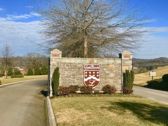 3603 Waterside Way, Louisville, TN 37777 (#1050890) :: Billy Houston Group