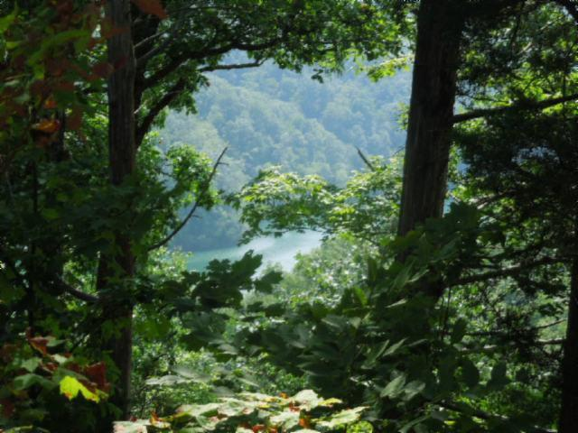 Lot 16 Sunset Pointe, Allons, TN 38541 (#1051372) :: Billy Houston Group