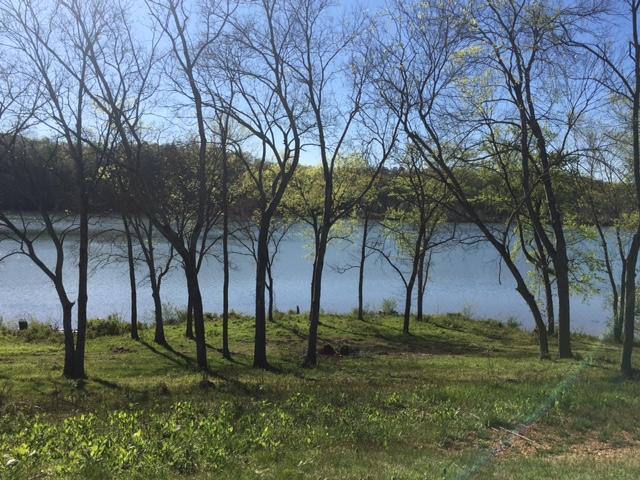 358 Azalea Lane, Loudon, TN 37774 (#1051638) :: CENTURY 21 Legacy