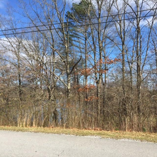 Deer Creek Drive, Crossville, TN 38571 (#1052442) :: Billy Houston Group