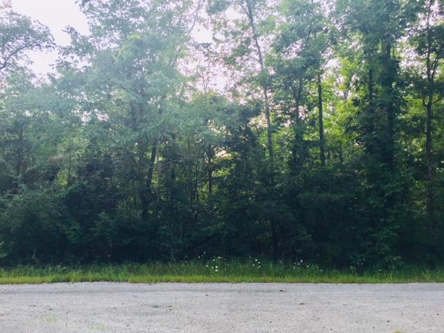 33 Modac Circle, Crossville, TN 38572 (#1052578) :: Shannon Foster Boline Group