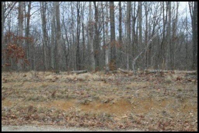 Maple Lane, Lot # 274, Jamestown, TN 38556 (#1053114) :: Billy Houston Group