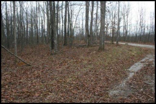 Maple Loop, Lot 276, Jamestown, TN 38556 (#1053121) :: Tennessee Elite Realty