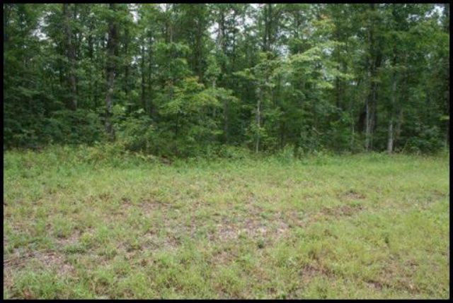 Spruce Creek Drive, Lot #306, Jamestown, TN 38556 (#1053306) :: Realty Executives
