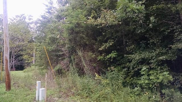 0 Honeysuckle Fall Creek Falls 1, Spencer, TN 38585 (#1053868) :: Billy Houston Group