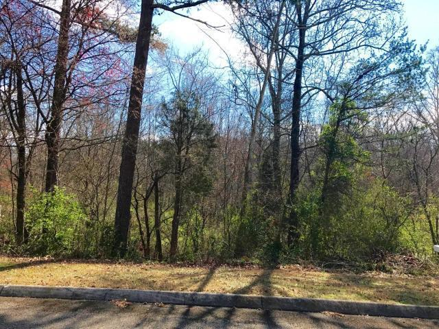 Lot 18 Split Oak Drive, Knoxville, TN 37920 (#1054435) :: Billy Houston Group