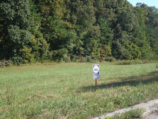 Lot 11 Redbird Lane, Rutledge, TN 37861 (#1054556) :: Billy Houston Group