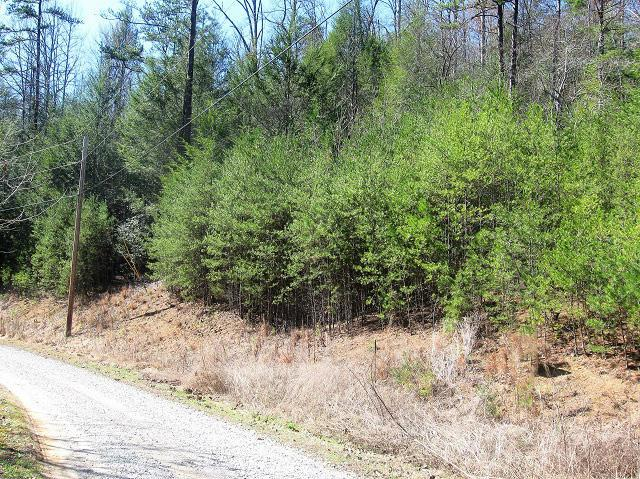 Tr-5 Mossy Cove Way, Sevierville, TN 37876 (#1055372) :: Billy Houston Group