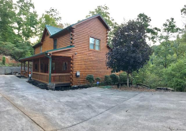 160 Nona Way Lane, Caryville, TN 37714 (#1055820) :: Shannon Foster Boline Group