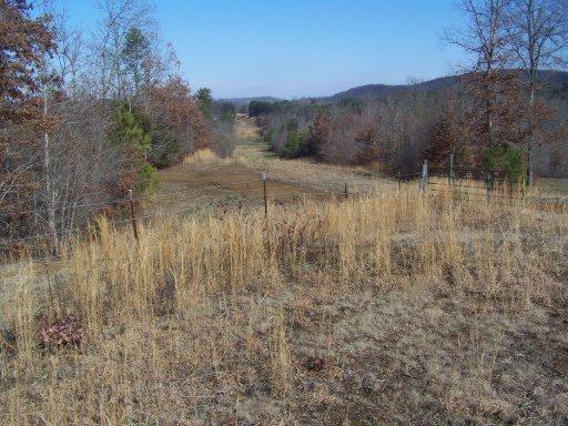 00 County Road 28, Calhoun, TN 37309 (#1056103) :: Shannon Foster Boline Group