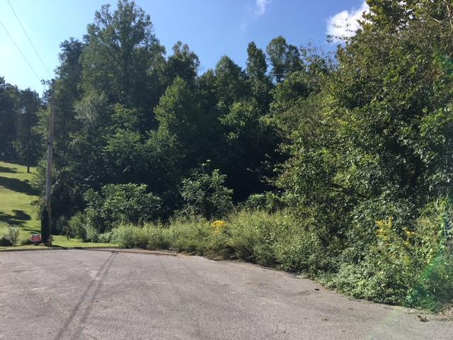 Stone Ridge, Andersonville, TN 37705 (#1056125) :: Venture Real Estate Services, Inc.
