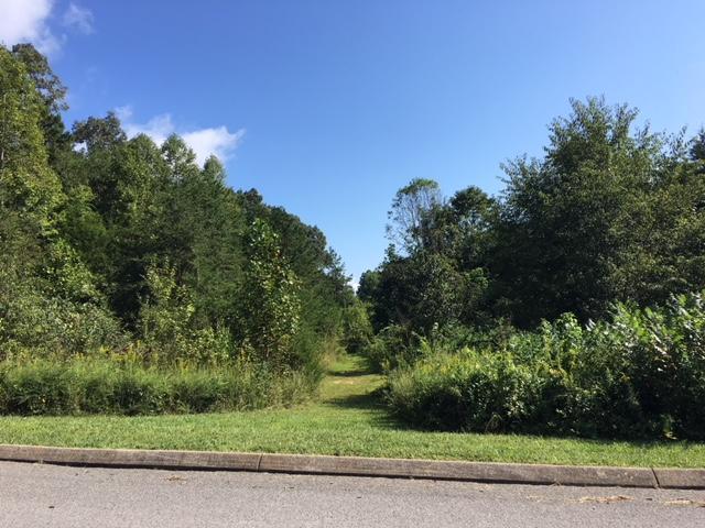 Stone Ridge, Andersonville, TN 37705 (#1056126) :: Venture Real Estate Services, Inc.