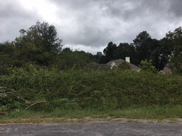 300 Shawnee View, Loudon, TN 37774 (#1056523) :: Billy Houston Group