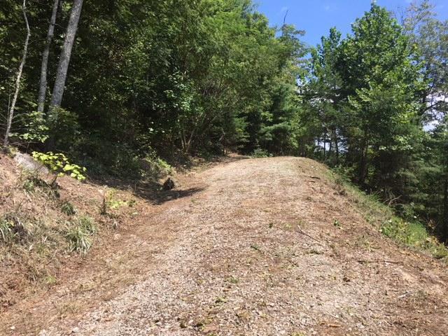 171 Anatole Pass, Townsend, TN 37882 (#1056693) :: Billy Houston Group