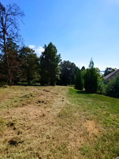W Mountain Drive, Rockwood, TN 37854 (#1056953) :: Billy Houston Group