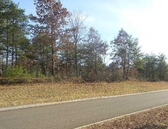 Red Wing Drive, Vonore, TN 37885 (#1056993) :: Billy Houston Group