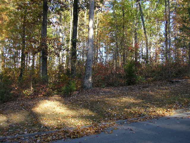 Blount Circle Circle, Rutledge, TN 37861 (#1057058) :: The Creel Group | Keller Williams Realty