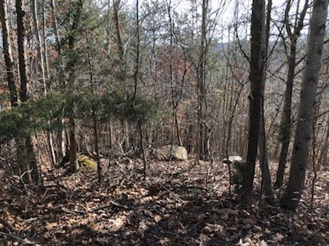 Whistle Valley Rd, Tazewell, TN 37879 (#1059515) :: Shannon Foster Boline Group