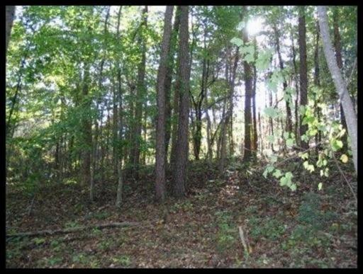 Tract 2 Jd Lee Farm Rd, Tellico Plains, TN 37385 (#1059539) :: Shannon Foster Boline Group