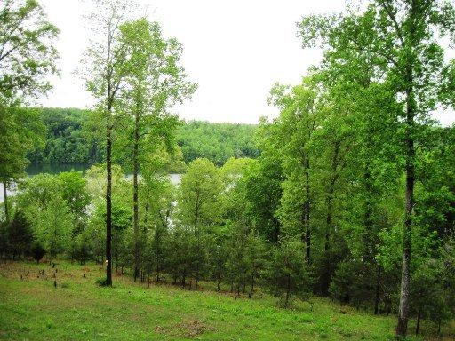 Bucks & Doe Lane, LaFollette, TN 37766 (#1059592) :: Billy Houston Group