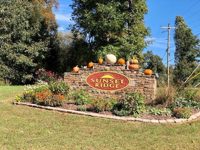 485 Summerwind Drive, Crossville, TN 38571 (#1059842) :: Billy Houston Group
