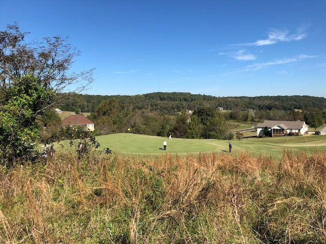 Walelu Tr, Vonore, TN 37885 (#1059968) :: Shannon Foster Boline Group