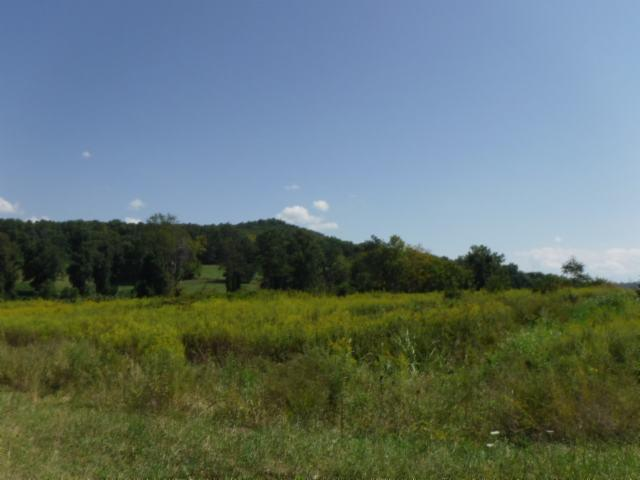6.61 Ac. Jared Road Rd, Sparta, TN 38583 (#1061356) :: Billy Houston Group