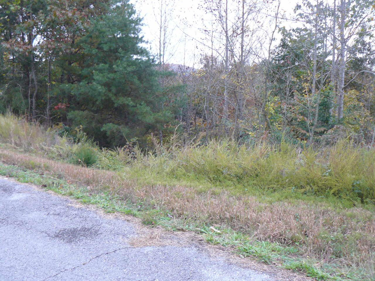Lot 708 Whistle Valley Rd - Photo 1