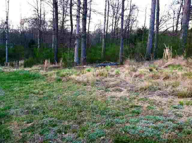 Lot 23 County Road 7030, Athens, TN 37303 (#1061825) :: Billy Houston Group
