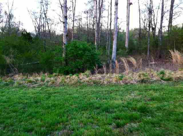 Lot 24 County Road 7030, Athens, TN 37303 (#1061827) :: Shannon Foster Boline Group
